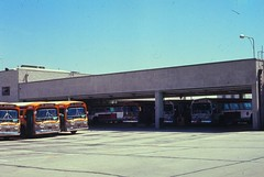 003 RTD Div 6 OceanPark 19690327 AKW (Metro Transportation Library and Archive) Tags: venice santamonica scrtd division6 alanweeks