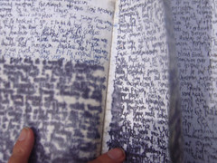 Chinatown Scrawling (ALEX XIE) Tags: scrawl spadina slint cypher ridgeinroad keysuptoheaven