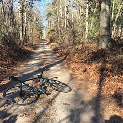 Here's to 60 and sunny, because winter is stupid! #weavercycleworks #custombicycles #ridethepines #cycling #roadslikethese #awesome
