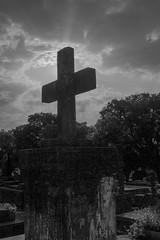 Cemitério (Vincent Zanicheli) Tags: cruz pedra cemitério dia diferente tudo depende do seu olhar pirassununga brasil interior são paulo preto e branco