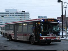 Toronto Transit Commission #8036 (vb5215's Transportation Gallery) Tags: ttc toronto transit commission 2007 orion vii