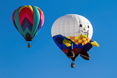 _MG_9000 (dendrimermeister) Tags: balloon fiesta festival fun color flight hot air aviation humpty dumpty egg
