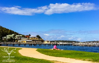 Chowder Bay, Clifton Gardens in Sydney Harbour #vaas8790 #chowderbay #cliftongardens #sydneyharbour  #sydney #newsouthwales  #australia