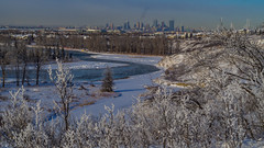 Winter City (kensparksphoto) Tags: calgary alberta canada bow river fish creek park snow winter canonfd50mmf35macro manualfocus legacyglass