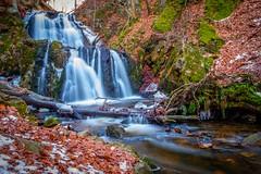Forsakar (dannygreyton) Tags: waterfall nature nationalpark degeberga forest woods longexposure malmo sweden winter leafs