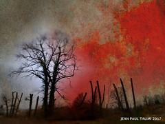 Soleil rouge (JEAN PAUL TALIMI) Tags: deux exterieur rouille rouge talimi texture arbre hiver yonne appoigny silouettes nature nuages bourgogne piliers