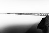 Lago di Lesina - Gennaio 2017 (Maurizio Tattoni....) Tags: lagodilesina italy puglia daunia capitanata gargano ponte lago lesina bn bw blackandwhite biancoenero monocrome leica mauriziotattoni