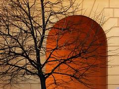 la luce oltre (fotomie2009) Tags: porto maurizio imperia liguria italy italia riviera ligure ponente arco arch tree winter inverno albero spoglio