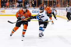 "Missouri Mavericks vs. Wichita Thunder, February 3, 2017, Silverstein Eye Centers Arena, Independence, Missouri.  Photo: John Howe / Howe Creative Photography • <a style=""font-size:0.8em;"" href=""http://www.flickr.com/photos/134016632@N02/32561324452/"" target=""_blank"">View on Flickr</a>"