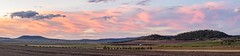 Pilton Valley sunset (andrew.walker28) Tags: panorama sunset evening afternoon orange yellow red colour color pink pilton valley queensland australia