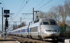 TGV Atlantique 402 (SylvainBouard) Tags: railways train sncf tgv atlantique