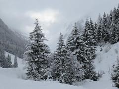 20170218Schwarzach03 (talfons) Tags: schwarzachtal gerlos winter zillertal tirol austria