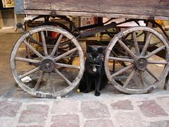 Le Chat Noir (lareta24) Tags: negro montmartre gato carro barrio parís gatonegro lechatnoir bohemio