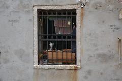 DSC_0306 (antiogar) Tags: venice venezia venedig venis