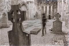 Abadía de Corcomroe (lopnicolas) Tags: ireland abbey irlanda abadía éire corcomroe