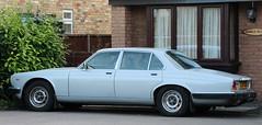 SJN 176W (Nivek.Old.Gold) Tags: auto 1980 42 daimler sovereign