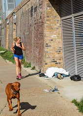 Towpath Jogger (Mabacam) Tags: dog london walking canal camden homeless regentscanal islington jogger waterway towpath sleeper watercourse 2015