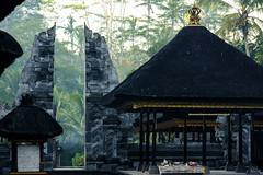 Gunung Kawi - Porte (Nicotch) Tags: bali temple jungle porte gunung indonsie kawi