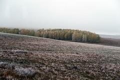 RU2029 伊爾庫次克州 (S.K. LO) Tags: russia easternsiberia irkutskregion