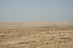 qatar deserto (6) (Parto Domani) Tags: trekking desert arabic east ash desierto oriente middle peninsula medio wste qatar deserto arabica dsert penisola   escursione  shaqra wste dsert