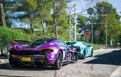 Purple. (Luca.Castaldini Photography) Tags: