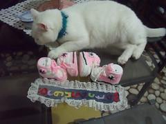 DURU'nun conversleri (1) (rgantam) Tags: babybooties rg bebekpatii bebekrgleri knittingconvers rgconvers bebekpatikleri durununcicileri elemeihandmade