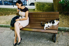 Istanbul, Turkey 2015 (f.d. walker) Tags: park street people woman pet cats sunlight color animal cat turkey bench person women asia europe phone candid streetphotography streetportrait naturallight istanbul iphone besiktas candidphotography