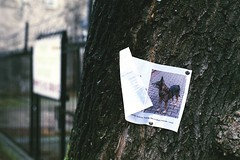 Missing... :( (Analog World Thru My Lenses) Tags: warsaw warszawa rikenon50mmf14 ricohxr7 fujifilmsuperiaxtra400exp