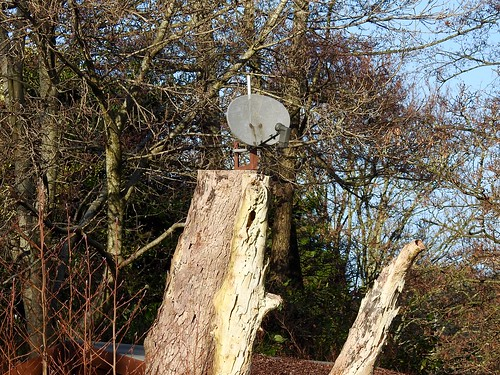 Squirrelsat TV, The Moorings, Monmouthshire-Brecon Canal, Pontymoile, Pontypool 28 December 2016