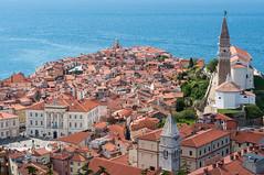 Slovenia (Yann OG) Tags: slovenia slovenija slovénie piran pirano istrie baie gulf adriaticsea meradriatique 50mm citébalnéaire