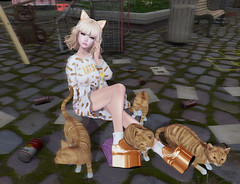 Ginger Kitties FTW! (hump muffin) Tags: collabor88 cosmetic fair events fashion blogging epiphany ashemi cats catwa cute fashionably dead fashiowl half deer imeka kawaii mesange mignon sweet thing wasabi pills ifttt wordpress second life hump muffin sl avatar girl clothes blog