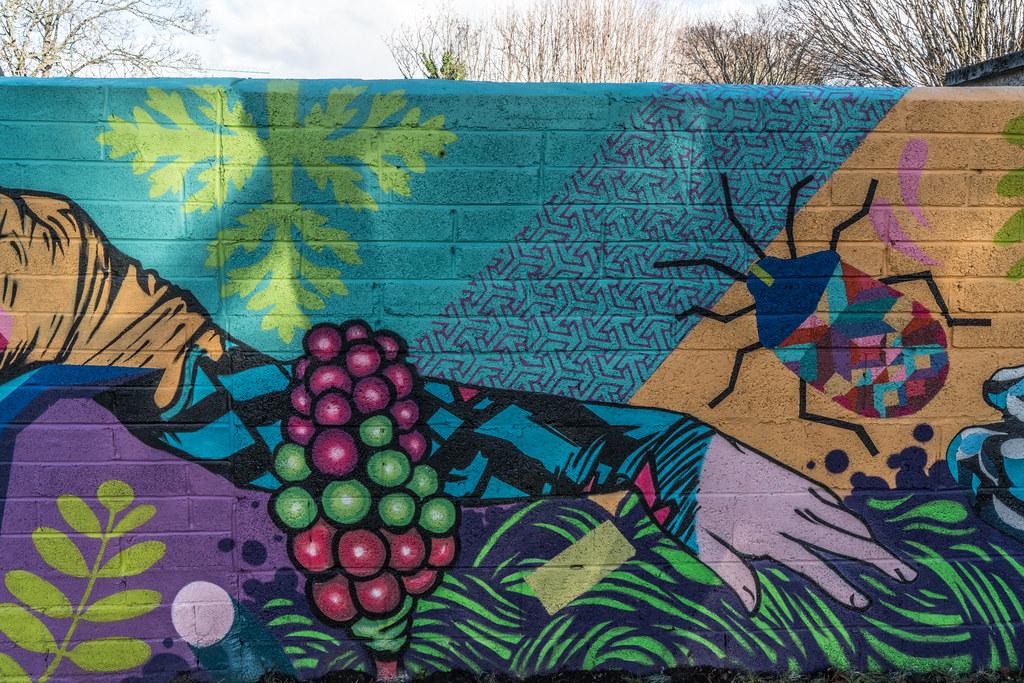 NEW STREET ART AND NEW TEAROOMS [HERBERT PARK DUBLIN]-124050