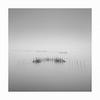Silent Killers (Nick green2012) Tags: fishing nets venice lagoon square longexposure minimalist