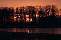 Sunset over lake reflection in water (aaron19882010) Tags: lakenheath fen lake sunset over water trees silhouette nature outdoors outside canon photography sigma lens reflection starlings