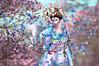 Princess of Asia . (Venus Germanotta) Tags: secondlife fashion model pose fierce geisha asian pedals cherryblossoms nature trees kimono outside bunny cute elegant beautiful photoshop edit aesthetic style majestic plants