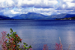 loch lomond and trossachs national park (Duncan the road rebel) Tags: landscape landscapesofscotland lochlomond loch lomond trossachsnationalpark trossachs nationalpark park outdoor outside scottishlandscape scotlandslandscape scotland scottish water mountain mountains