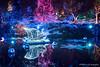 Festival of Lights 2016 (1) (littlekiss☆) Tags: festivaloflights holidayseason illumination nightscape night winter christmas christmaslight vancouver vandusenbotanicalgarden littlekissphotography