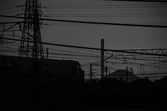 201701111650 (jahmony) Tags: monochrome blackandwhite bw blackwhite dusk twilight slanting sunset street serene photo night outdoor mono bnw tokyo train mtfuji landscape steel tower steeltower electric wire electricwire fine weather fineweather cable border