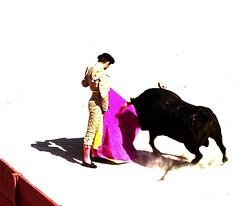 Temple (aficion2012) Tags: arles novillada septembre 2016 blohorn jalabert corrida france francia andy younes novillero faena toros bull fight bullfight toreaux capa capote capeando