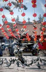 Guan Yin Temple Penang (Ah Wei (Lung Wei)) Tags: penang penangisland georgetown pulaupinang malaysia georgetownpenang my landscape nikon50mmf18g 50mmf18g nikond750 nikon ahweilungwei guanimtemplepenang guanimtemple kuanimteng columba temple people portrait snapshot streetsnap