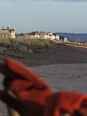 7069 Sunny Littlestone-on-sea (Andy - Busyyyyyyyyy) Tags: 20170114 bbb beach fence fff ggg gloves glovesonfence kent