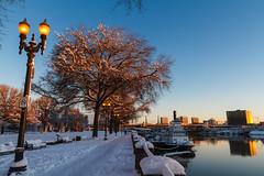Snow: Waterfront Park (Cameron Booth) Tags: oregon portland multnomahcounty unitedstatesofamerica usa us snow willametteriver outdoor river