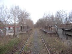 DSCN5220 (TajemniczaIstota761) Tags: abandoned railway viaduct wiadukt kolejowy