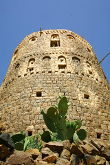 Cactus at the bottom of a tower - Yemen (Eric Lafforgue) Tags: republic arabic arabia yemen arabian ramadan yemeni yaman arabie jemen lafforgue arabiafelix  arabieheureuse  arabianpeninsula ericlafforgue iemen lafforguemaccom mytripsmypics imen imen yemni    jemenas    wwwericlafforguecom  alyaman ericlafforguecomericlafforgue contactlafforguemaccom yemenpicture yemenpictures