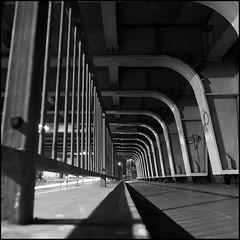 (maz hewitt) Tags: uk england bw film 50mm bronica fujifilm pyro railings acros pmk neopanacros mazhewitt camera:name=bronicasqa