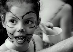 cat-stage - by fazen