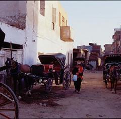 Egitto - Ottobre 1999 (Andrea  Perotti) Tags: nikon egypt f90 egitto nikonstunninggallery