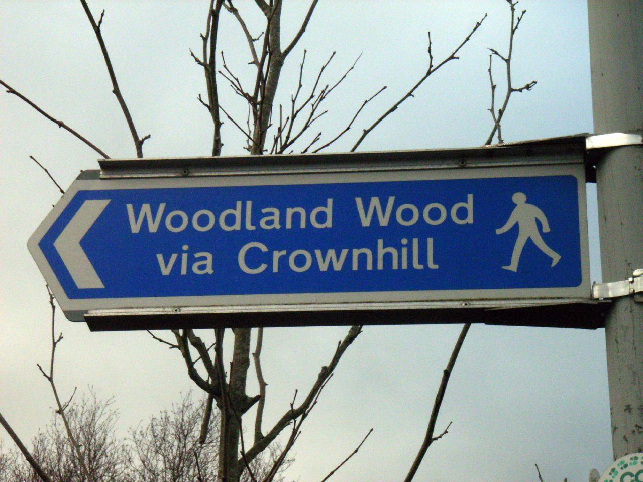 Woodland-Woods