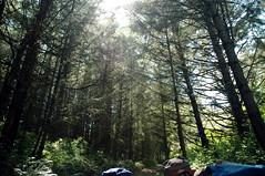 Light Shines In (DanSteingart) Tags: summer beachproject