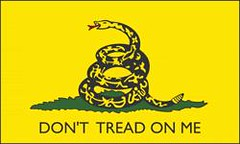 Dont Tread On Me Flag